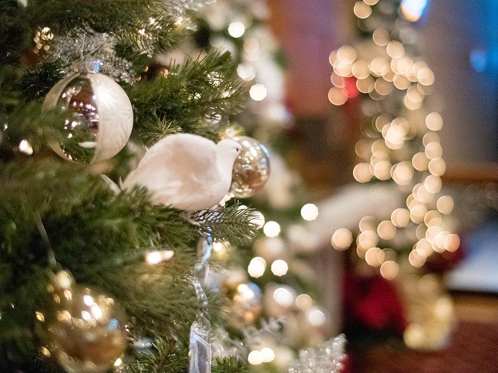 Friday, December 21. Christmas Decorating Help ...